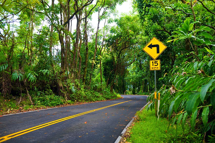 The curvy coastal road to Hana cuts through dense rainforest on the Hana Highway