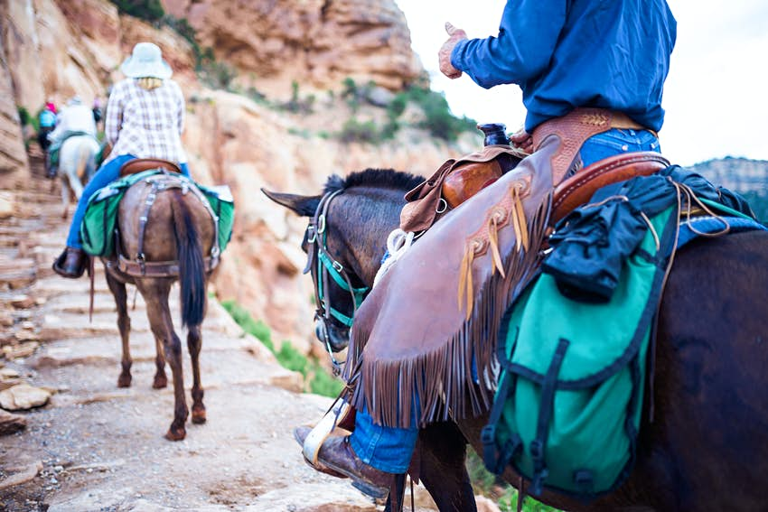 Horse riding in a canyon