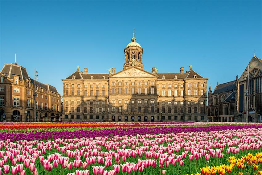 Un espace ouvert rempli de tulipes devant un immense palais