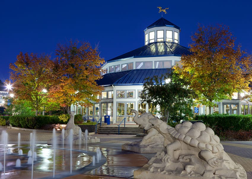 Chattanooga's Coolidge Park Carousel, built in 1894
