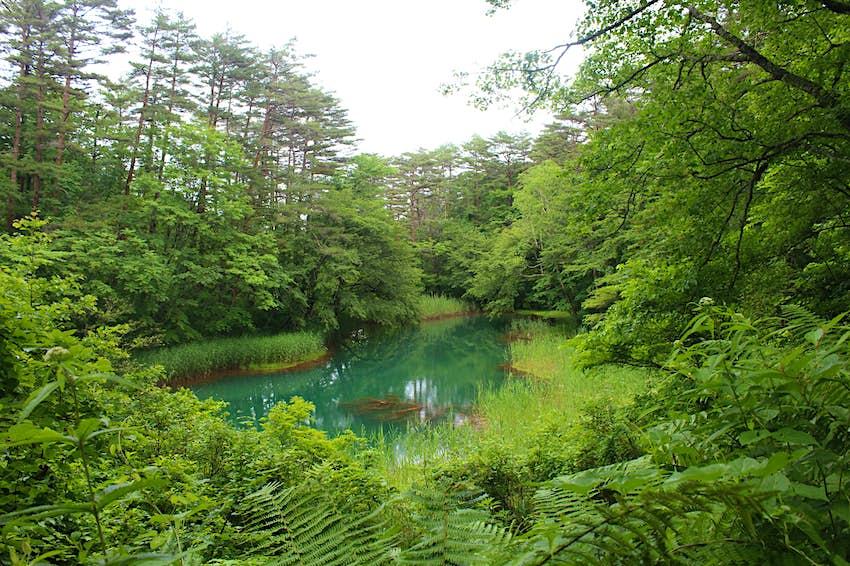 Bandai-Asahi-Pond.JPG
