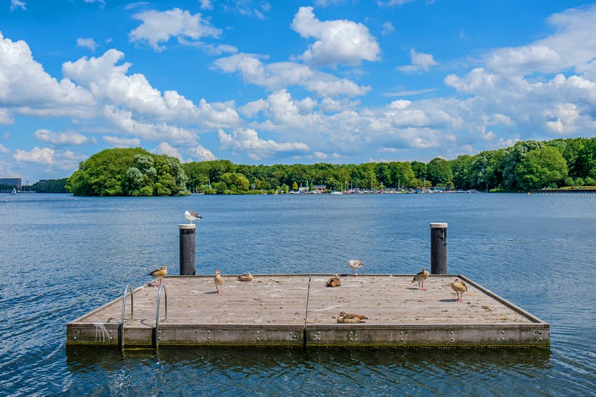 A small wooden pier floating on a beautiful lake surrounded by woods