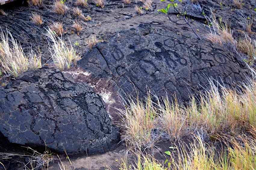 Petroglyphs carved into a rock
