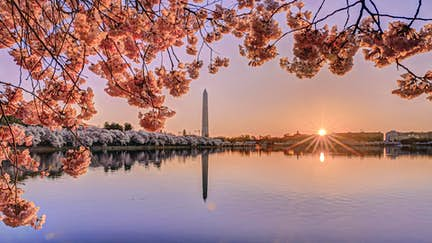 Introducing Washington, DC