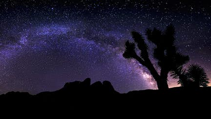 Travel News: Joshua Tree is now better than ever for stargazers