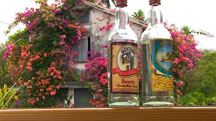 Just back from: tasting rum in Grenada