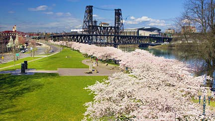 Why Portland is brilliant for solo travellers