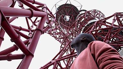 Race down the world's longest tunnel slide