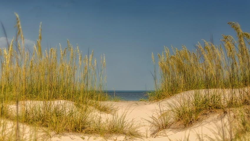 seagrass waves on sugar-white dunes on Amelia Island © Kat Sturtecky / 500px