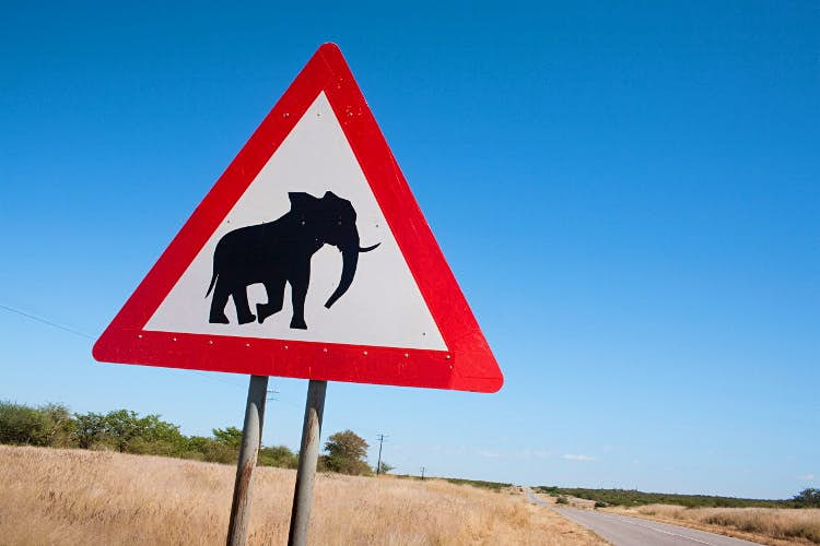 Self-drive safaris in Namibia
