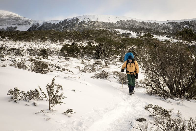 A male hiker walks on a snowy trail along the Overland Track in Tasmania.