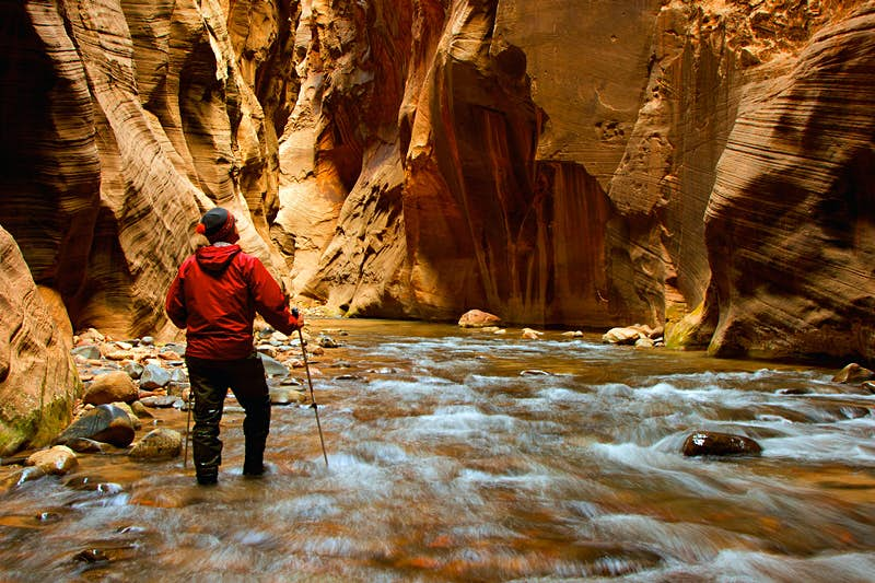 A man hiking into the narrows at Zion National Park; the hiker is surrounded by narrow canyon walls on all sides and is walking in a shallow river.