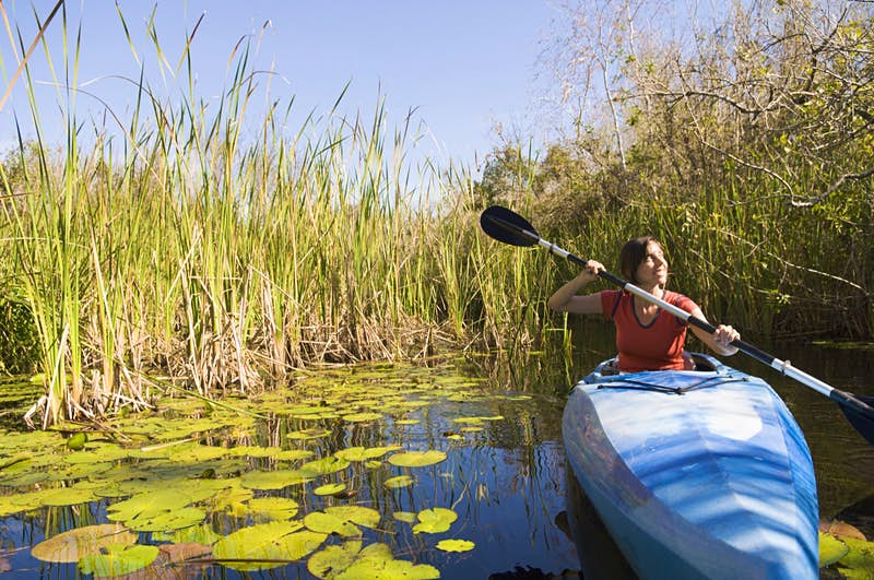 Hispanic woman paddling kayak in everglades with lily pads and reeds on both sides