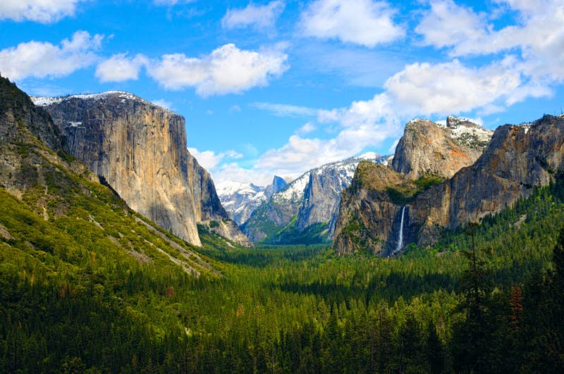 Sheer granite cliffs tower over a valley of evergreen trees as a tall waterfall cascades on the right