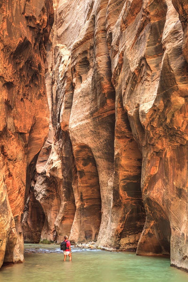 A hiker stands in the Virgin River looking up at the sheer cliff walls of the Narrows in Zion National Park
