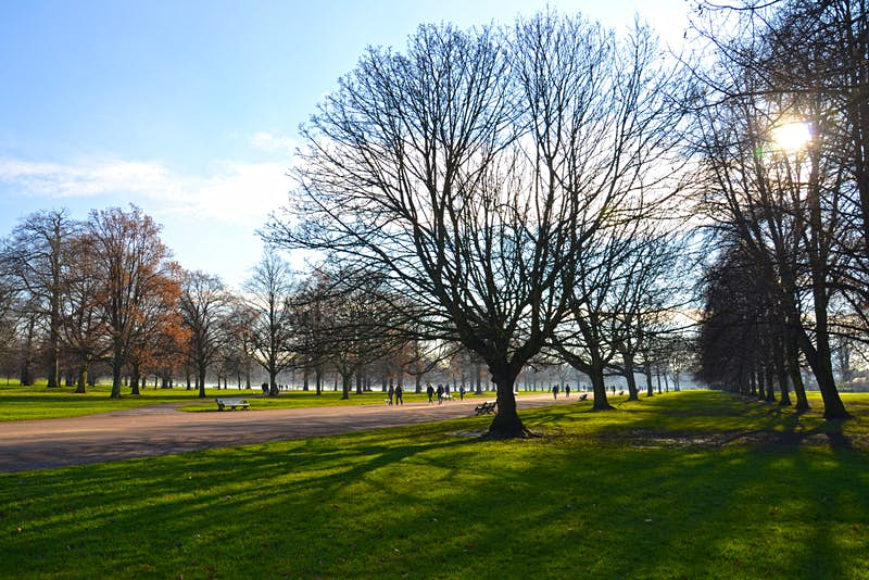 O Kensington Gardens tem sua origem em um campo de caça criado por Henrique VIII © Will Jones / Lonely Planet