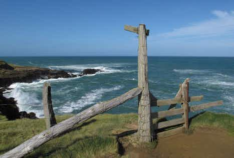 Top 5 alternative New Zealand road trips