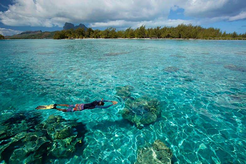 Features - bora-snorkel
