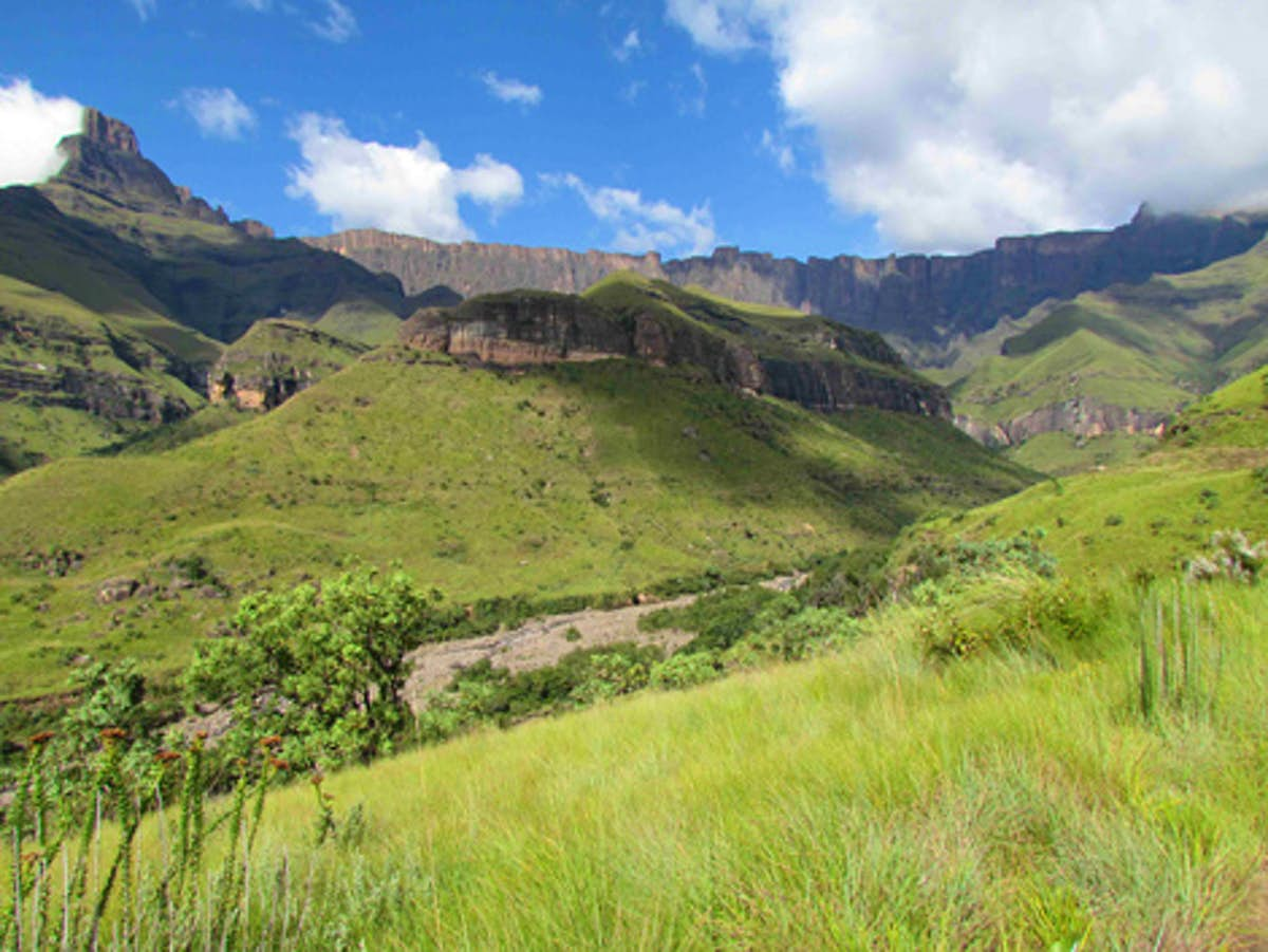 South Africa's top 10 parks and reserves