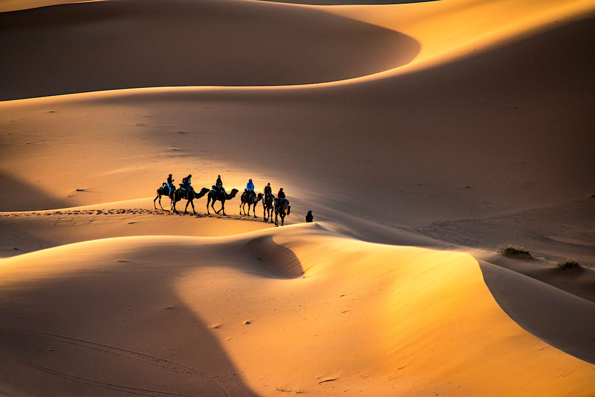 Desert of dreams: how and where to experience the Sahara - Lonely Planet