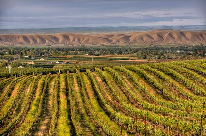 Exploring Washington's Yakima Valley one beverage at a time