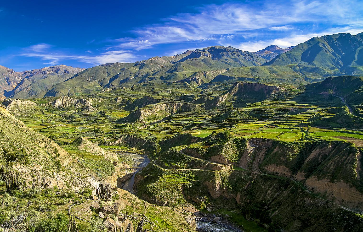 The view from one end of the Colca Canyon floor, covered in green crass and Inca-era farming terraces