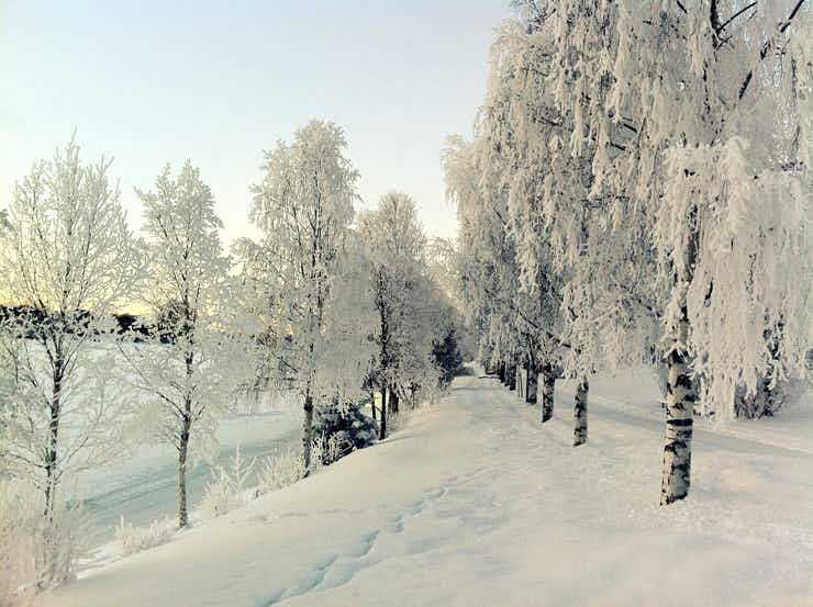 Umeå 2014: a year of highlights for the European Capital of Culture