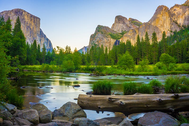 Valley view of Yosemite National Park. Huge rugged mountains are set against a clear blue sky, with tall pine trees and a lake in the foreground.