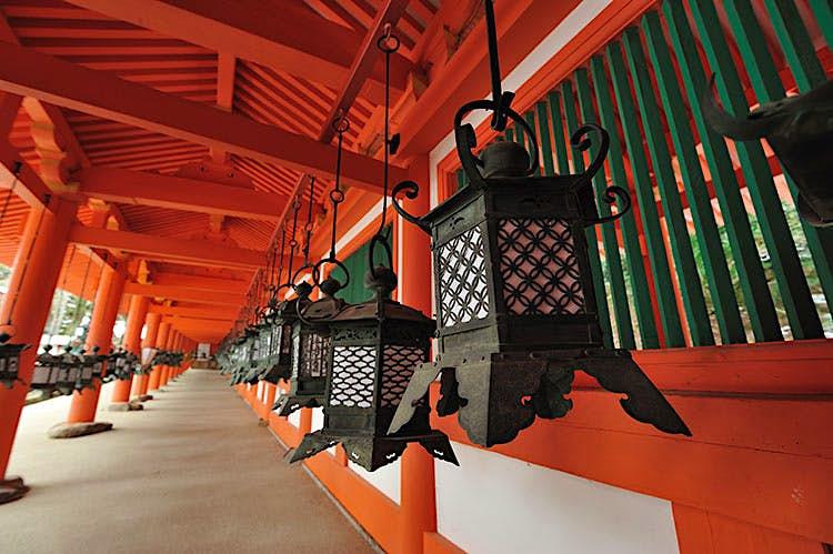 Lanterns swaying in the dazzling Kasuga Taisha shrine. Image by Haruhisa Yamaguchi / Moment / Getty Images