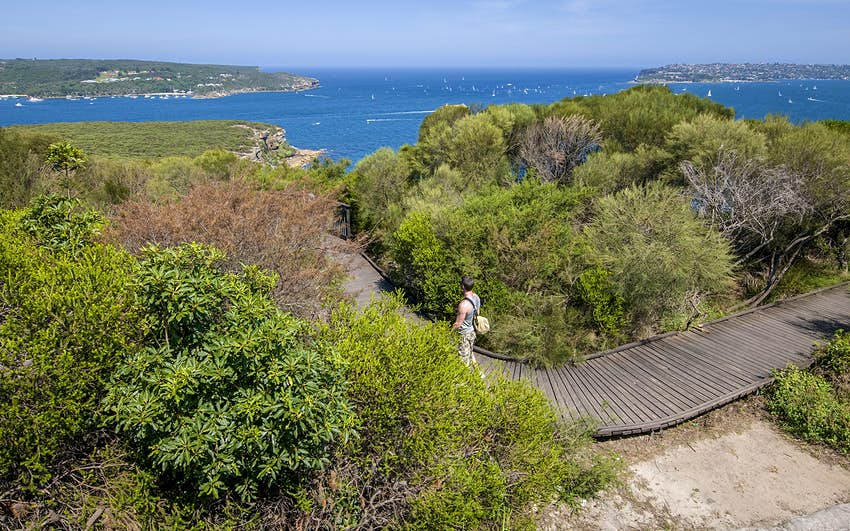 A man walks along a boardwalk between patches of brush, heading towards the coastline. The blue ocean is in the background. Sydney, Australia.