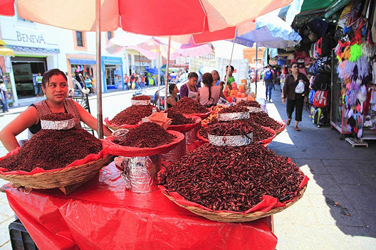 Like popcorn with legs, who could resist? Chapulines on sale in Oaxaca, Mexico. Image by Wendy Connett / Robert Harding World Imagery / Getty Images