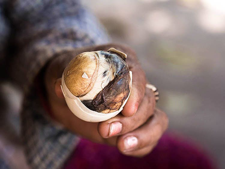 What came first, the chicken or the egg? Nevermind, eat balut in the Philippines to enjoy both simultaneously. Image by Miha Pavlin / Monument Open / Getty Images