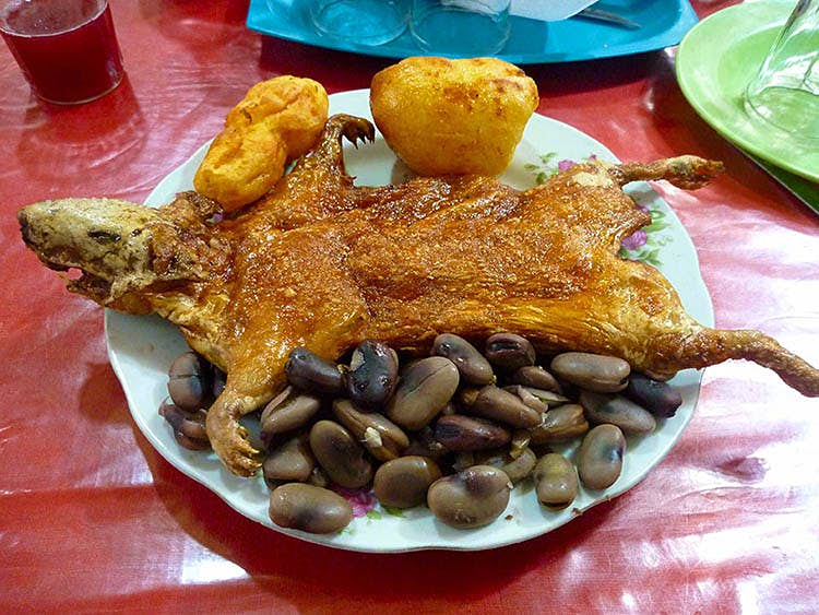 Not so cuddly now... a hearty plate of guinea pig, potatoes and beans in Peru. Image by Cute Kitten Images / Getty Images