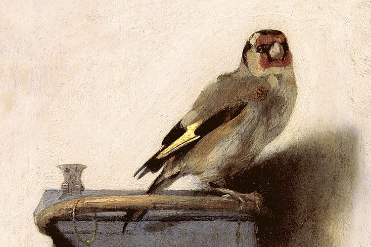 YOUNG GIRL PLAYING W GOLDFINCH BIRD PORTRAIT PAINTING ART REAL CANVAS PRINT
