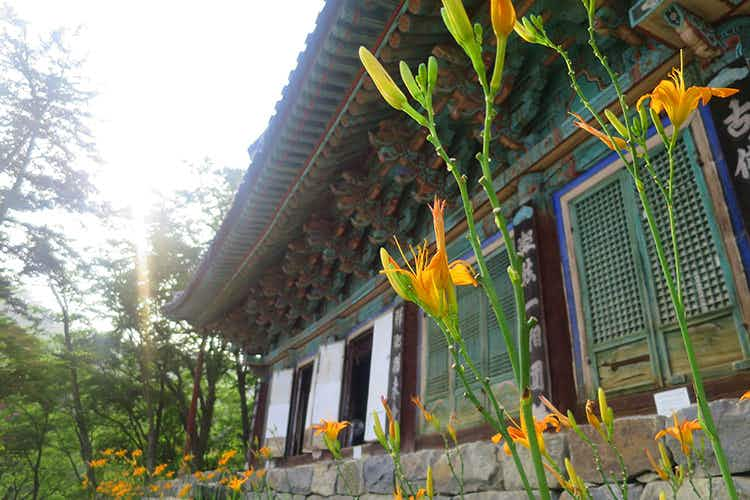 Zen retreat: a beginner's guide to Korean temple stays