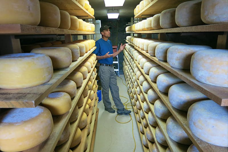 Cheese drying at James Ranch. Image by Leif Pettersen / Lonely Planet