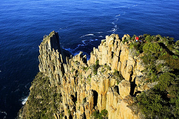 A section of the spectacular Three Capes Track. Image courtesy of Joe Shemesh and Tasmania Parks and Wildlife Service.