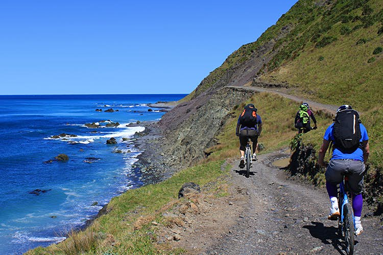 Explore urban and wild terrain - and take a side trip to wine country - on the Rimutaka Cycle Trail. Image courtesy ofHutt City Council/ Rimutaka Cycle Trail