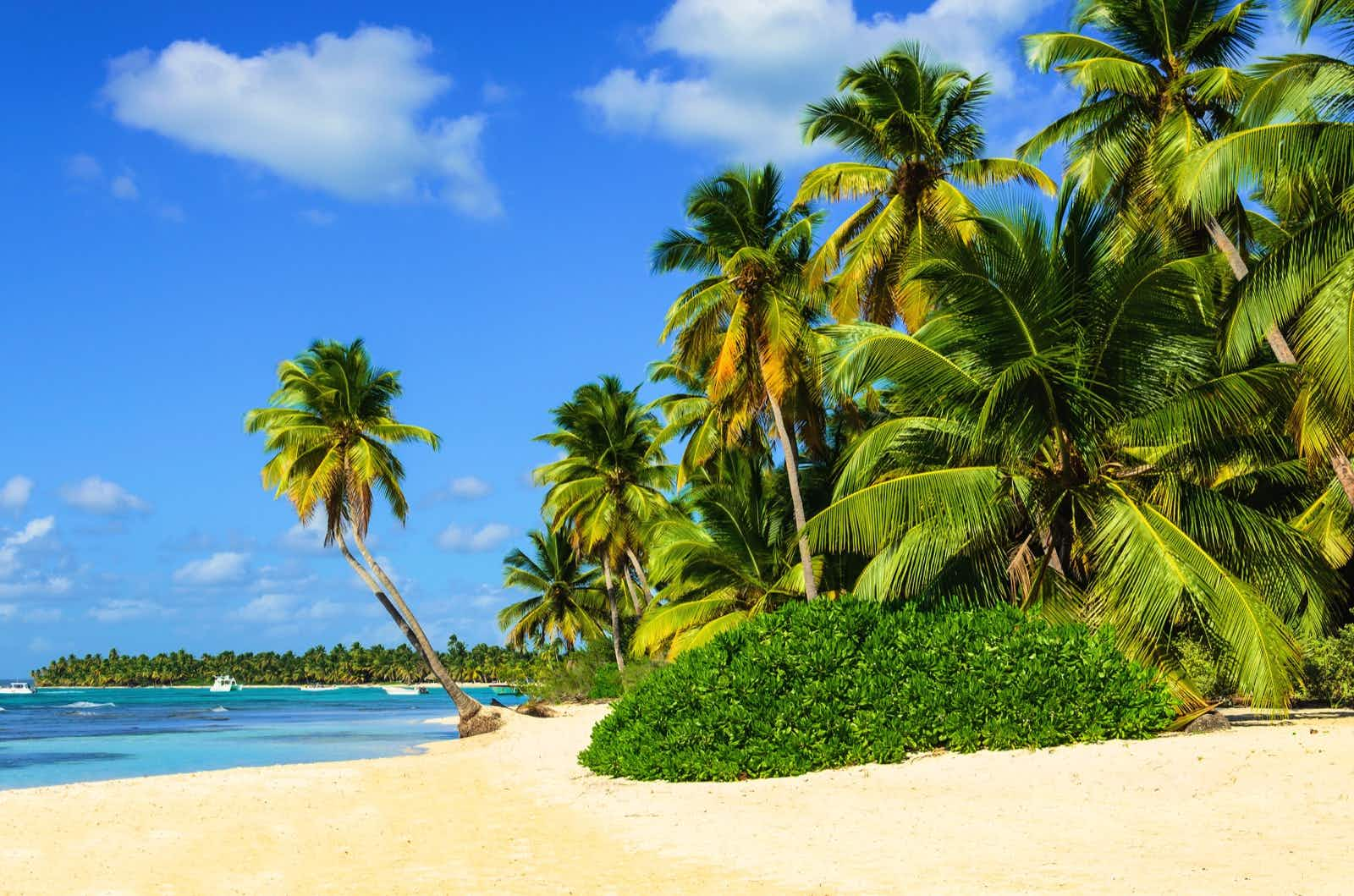 Which Caribbean island is best for you - Lonely Planet