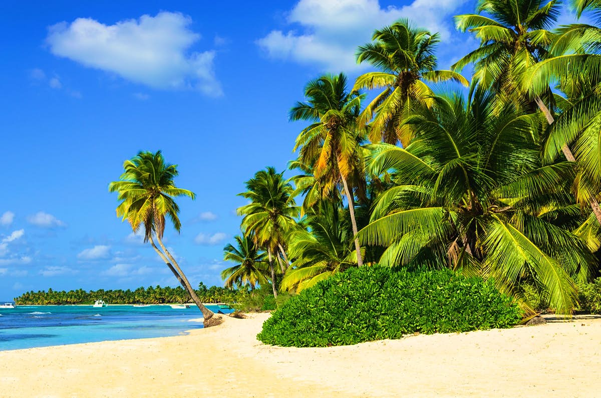 Which Caribbean island is best for you  Lonely Planet