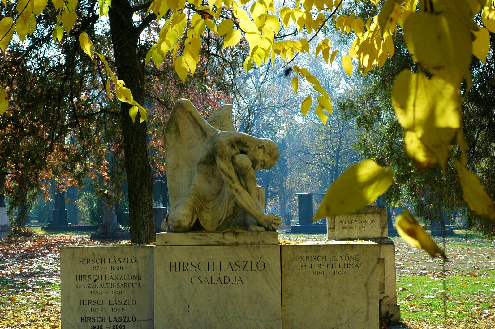 Statue of an angel atop a mausoleum in Kerepesi Cemetery, framed by the yellow leaves of surrounding trees