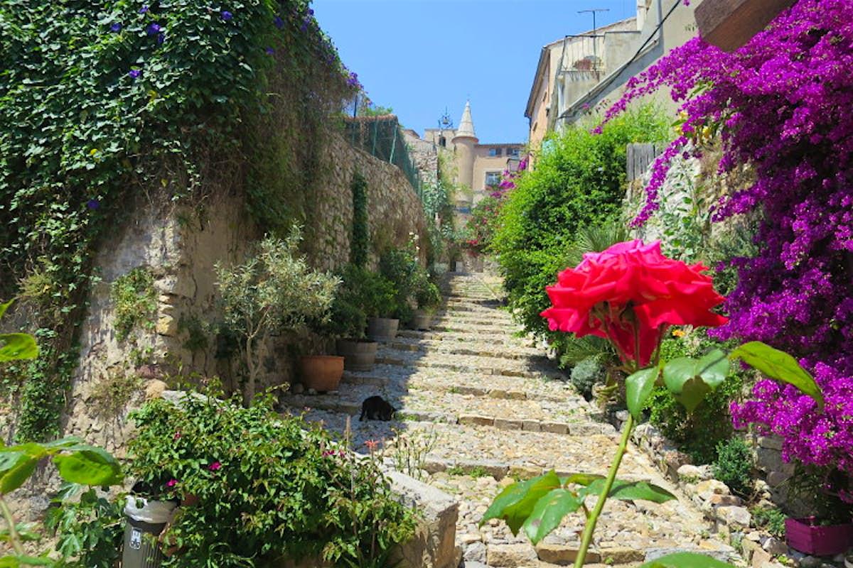 Cele mai bune 10 hoteluri din Riviera franceză – Unde să vă cazați în Riviera franceză, Monaco