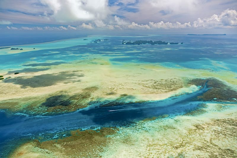 Diving in paradise: underwater adventures in Palau - Lonely