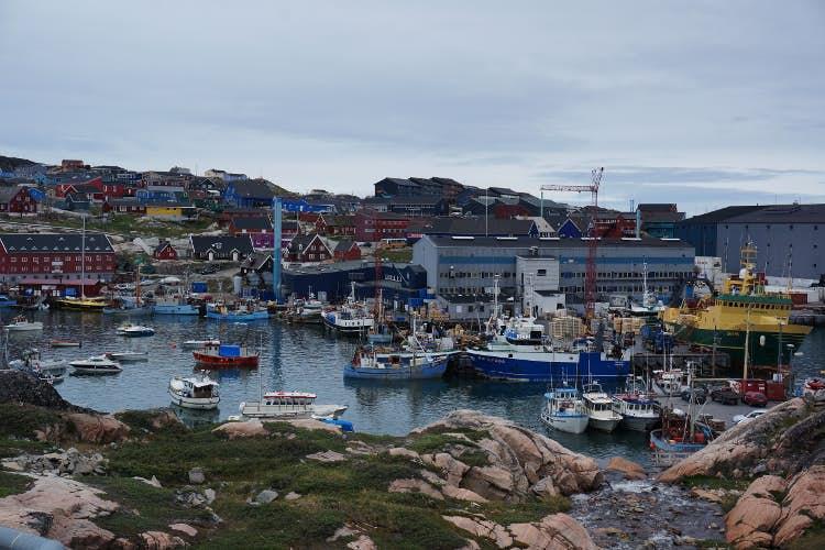 Babes in Ilulissat