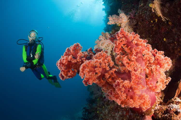Diving and snorkelling in Fiji