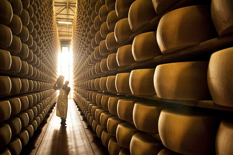 Parmigiano Reggiano is aged on wooden shelves for at least 12 months