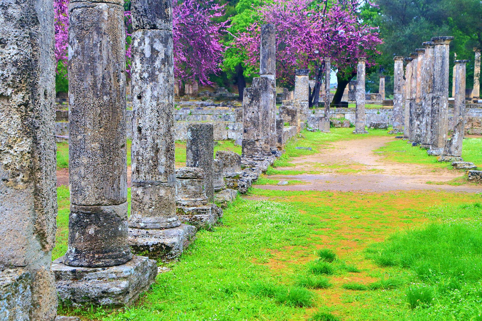 Rows of columns in the sanctuary of Zeus, Ancient Olympia © Inu / Shutterstock