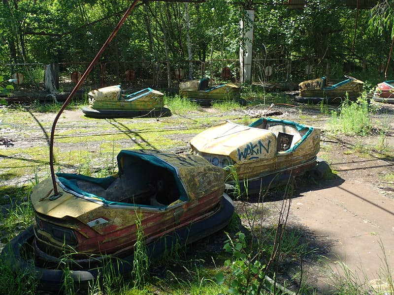 Decaying yellow and blue dodgem cars in Pripyat amusement park, with weeds growing between them and trees in the background.