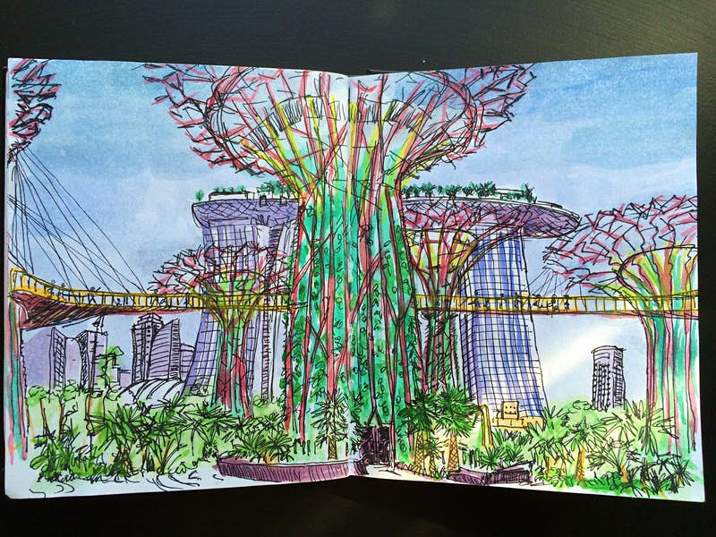 Supertrees & Skyway, Gardens By The Bay, Singapore