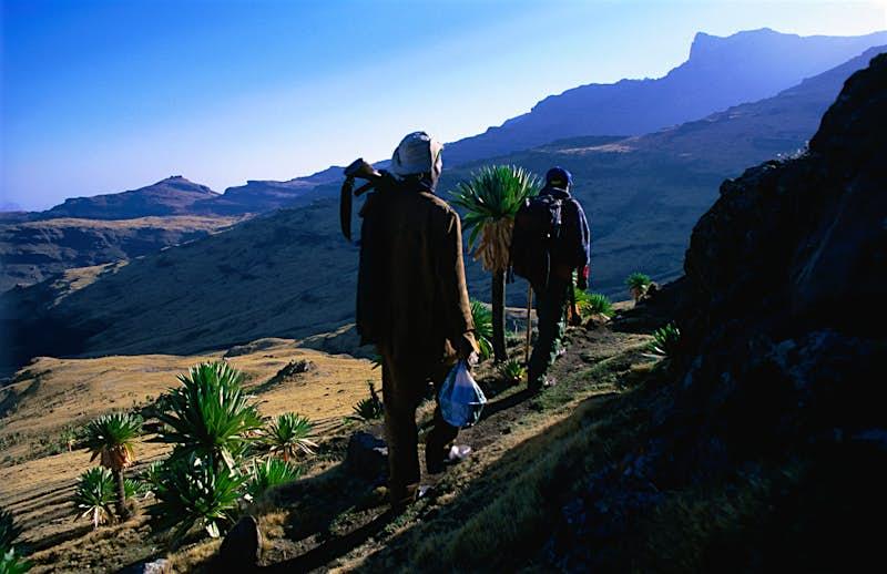 Trekking Ethiopia's Simien Mountains - Lonely Planet